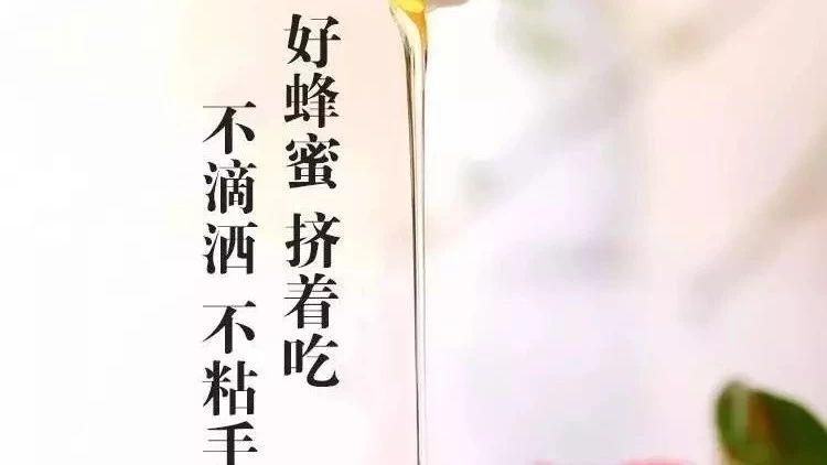蜜蜂卡通 蜂蜜芦荟茶 蜜蜂叫声 白醋蜂蜜 蜜蜂养殖前景