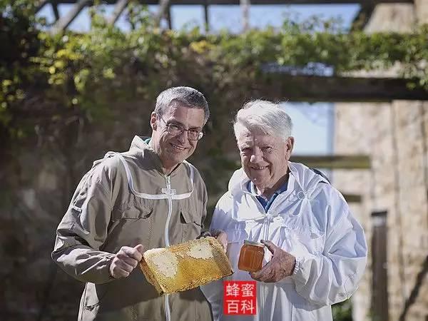 蜜蜂知识 白醋加蜂蜜 蜂蜜怎么喝 蜂蜜能去斑吗 honey蜂蜜