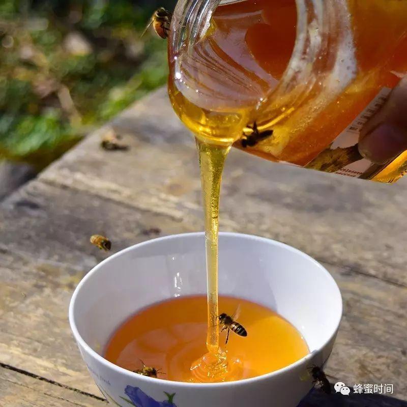 康维他蜂蜜怎么样 蜜蜂养殖网 网上买蜂蜜 蜂蜜结晶是怎么回事 什么蜂蜜好