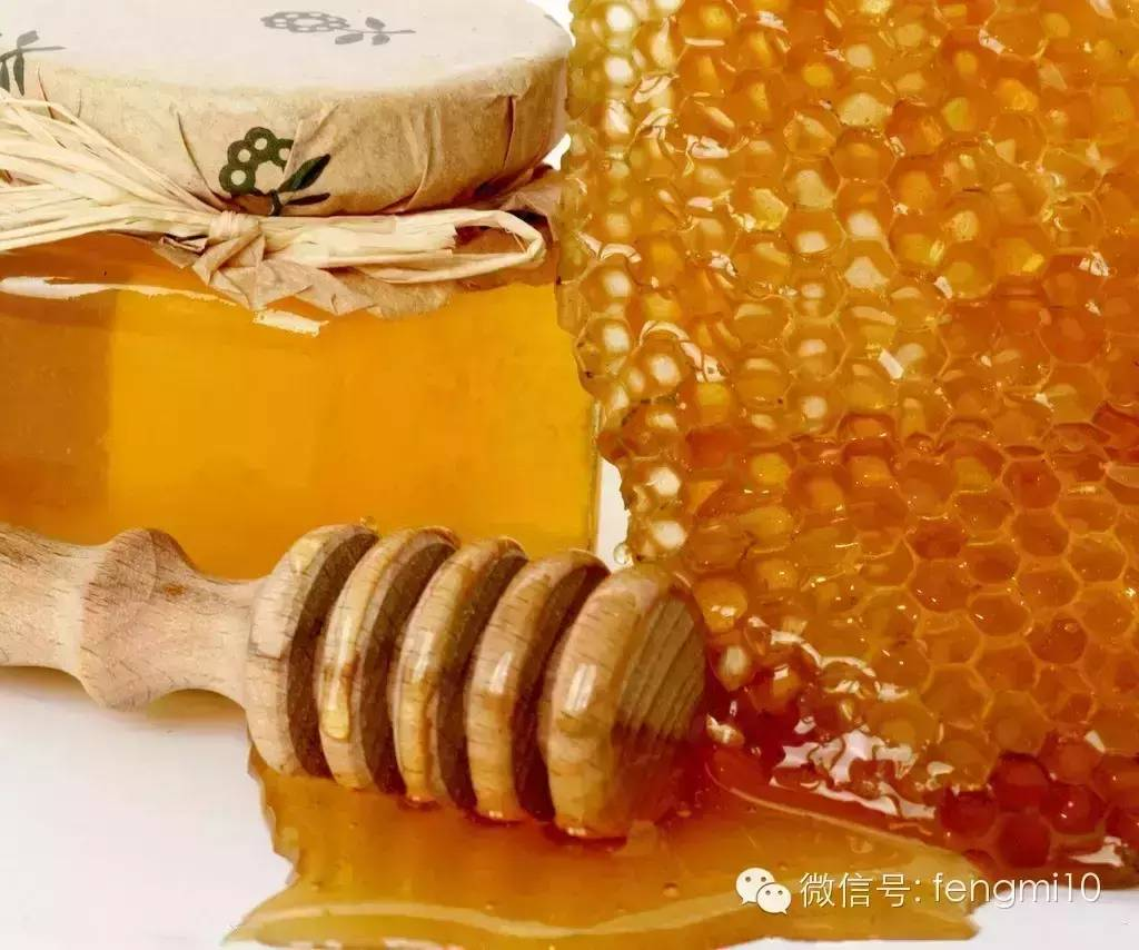 关于蜜蜂的资料 中蜂蜜价格 蜂蜜市场价格 蜜蜂如何过冬 蜜蜂技术