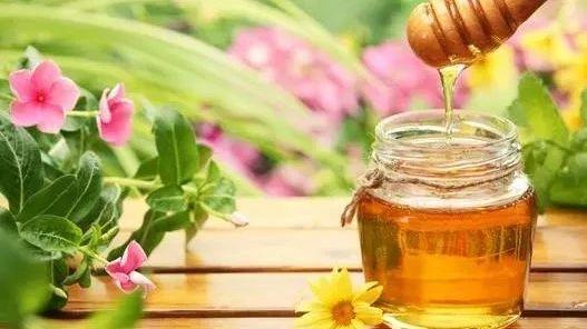 蜜蜂养殖技术视频全集 百花蜂蜜加盟 柠檬 蜂蜜 蜂蜜加白醋 蜜蜂蜂箱