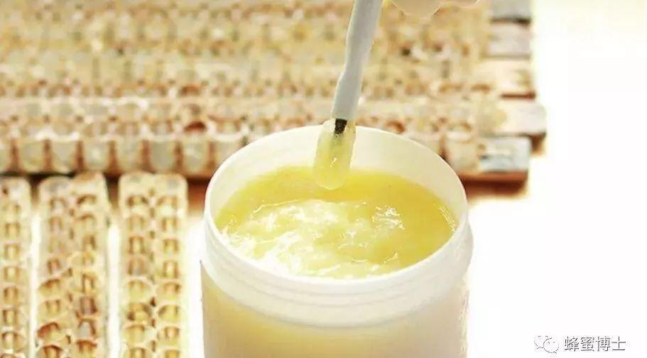 蜂蜜专卖店加盟 蜜蜂养植技术 如何挑选蜂蜜 麦卢卡蜂蜜 怎样养好蜜蜂
