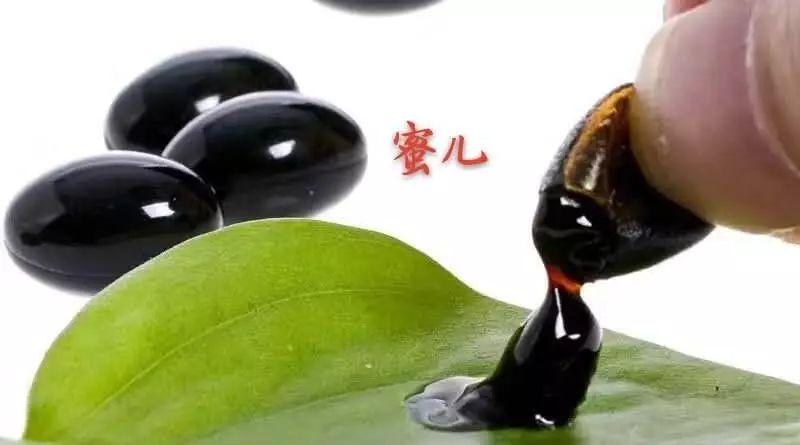 蜂蜜美容护肤小窍门 蜂蜜面膜怎么做 蜂蜜祛斑方法 中华蜜蜂网 孕妇能吃蜂蜜吗