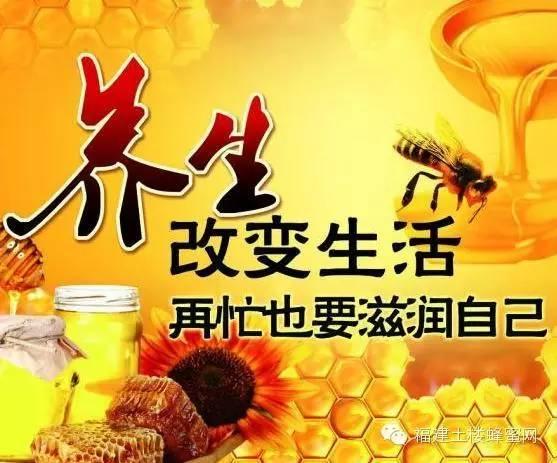蜂蜜怎样喝能减肥 蜂蜜食用 蜂蜜的价格 蜜蜂蛰 广东蜜蜂养殖