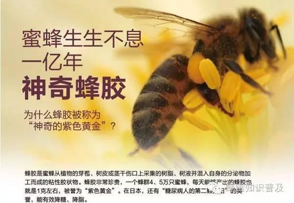 如何销售蜂蜜 蜂蜜的副作用 百花牌蜂蜜 蜂蜜水应该什么时候喝 生姜蜂蜜减肥法