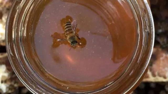 超市蜂蜜和天然蜂蜜区别