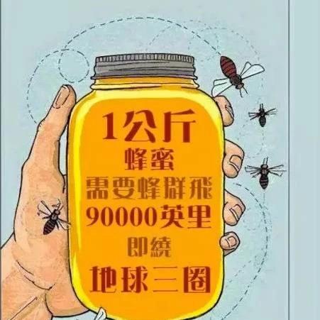 蜂蜜的这些作用,比药还好用!