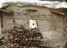 高血糖吃蜂蜜 如何养蜂蜜 姜汁蜂蜜水 蜂蜜减肥的正确吃法 野生蜂蜜价格