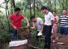 蜂蜜去痘印 冠生园蜂蜜价格 百花蜂蜜价格 蛋清蜂蜜面膜的功效 蜂蜜的作用与功效减肥