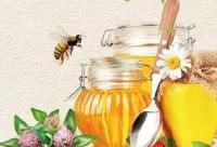 一勺蜂蜜+12种喝法,帮您省去上千医药费!