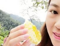 张家界知蜂谷土家蜂蜜的简单吃法与讲究