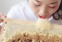 张家界知蜂谷2招蜂蜜妙用皮肤光滑