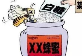 记者震惊  一斤假蜂蜜竟只要.....