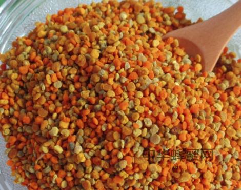 油菜花粉 作用与功效 前列腺治疗 成分 维生素 氨基酸