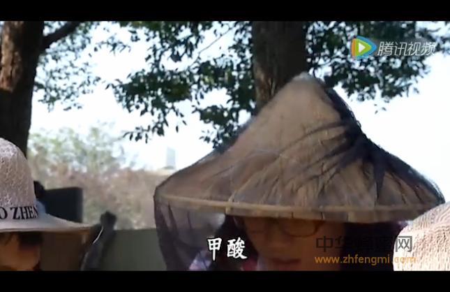 台湾 技术 视频