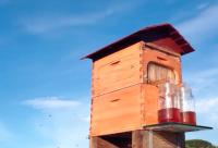 【视频】养蜂技术视频-养蜂高科技自动流蜜的蜂箱