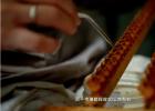 蜂王浆 养蜂 视频 技术 取王浆
