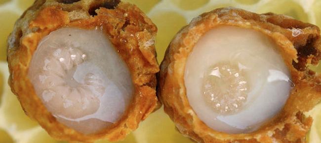蜂王浆 作用 阴道炎