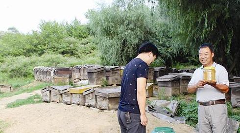 养蜂人 蜂蜜 蜜蜂养殖