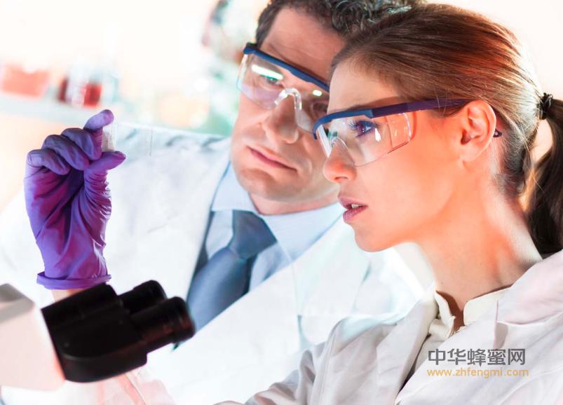 蜂胶 蜂胶的作用与功效 增强免疫力