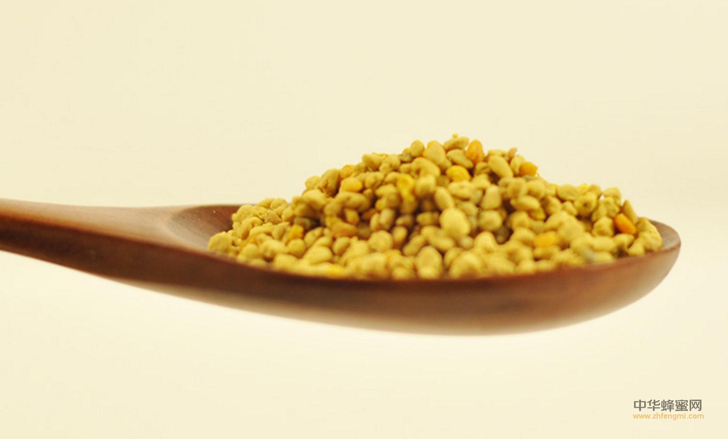 蜂花粉 蜂花粉的成分 蛋白质 花粉过敏