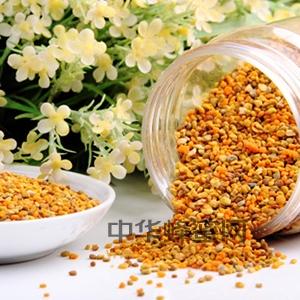 蜂花粉 花粉 产品深加工