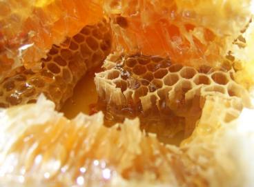 块状 蜂蜜 技术