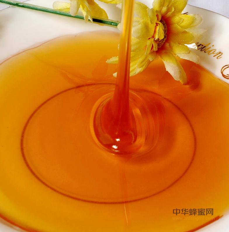 新西兰商家推出麦卢卡蜜蜂饮料深受消费者喜爱