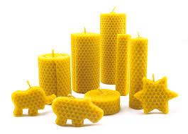 蜂蜡 技术 提纯