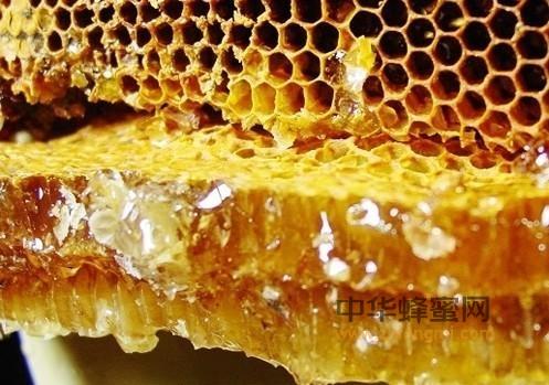 蜂巢 药理 镇痛作用