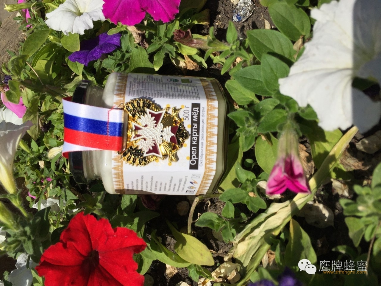【蜂蜜加白醋减肥法】_俄产蜂蜜有哪些特征