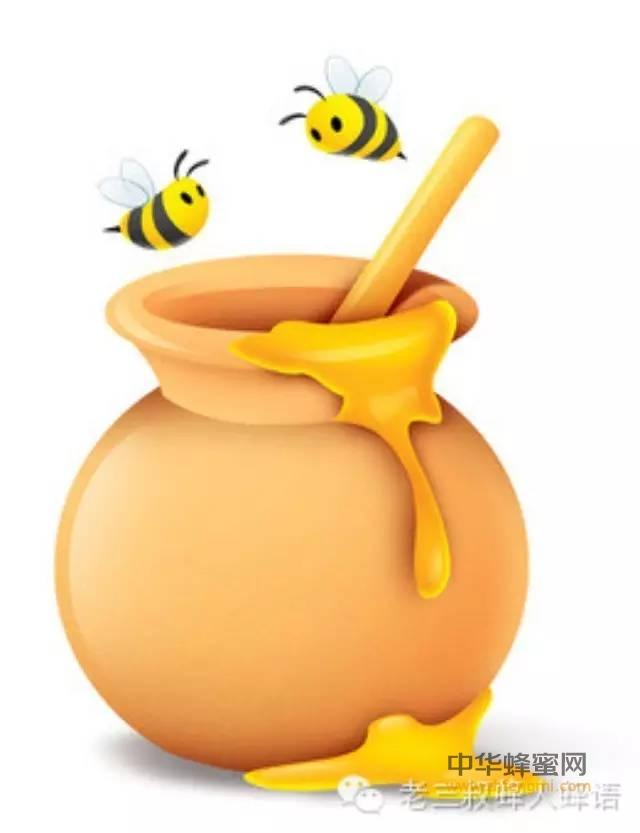 【功效蜂蜜】_养蜂专家教你如何辨别真假蜂蜜