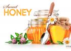 蜂蜜 蜂蜜出口 蜂蜜市场 蜂蜜贸易 埃及蜂蜜 蜂蜜国际市场