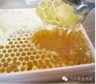 【每天喝蜂蜜好吗】_天然绿色蜂蜜—巢蜜的生产技术!