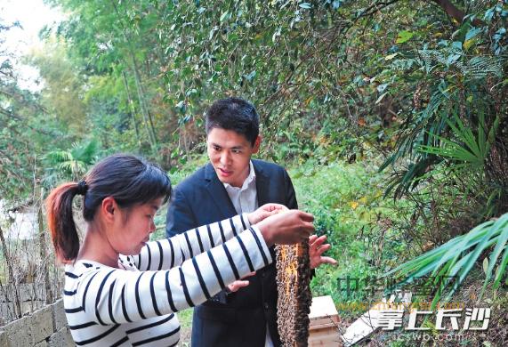 宁乡 李海军 蜜蜂养殖 养蜂人故事 蜂产业 蜂蜜