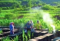 奋斗林场科学规划助力蜂产业远航