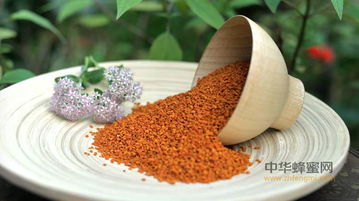 蜂花粉 作用 蜂花粉的作用 蜂花粉有什么好处 便秘 抗衰老 治疗前列腺