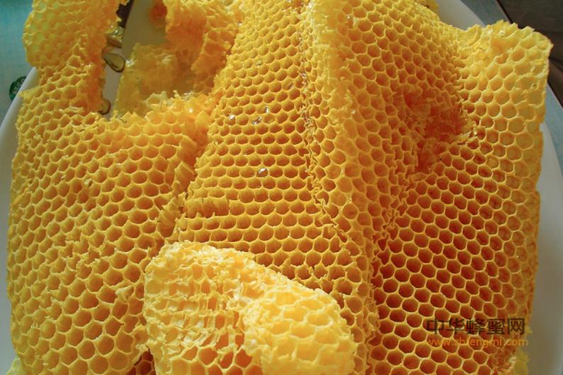 蜂蜡是什么 蜂蜡性质 蜂蜡颜色 蜂蜡状态 蜂群 蜜蜂