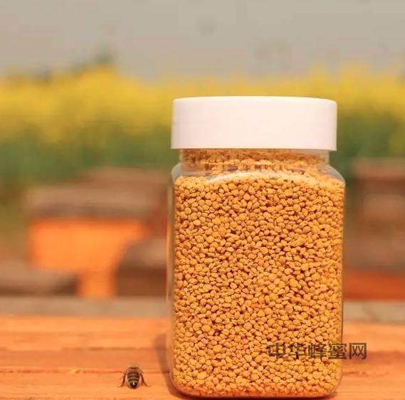 蜂花粉 蜂花粉美容 蜂花粉的作用 蜂花粉的美容方法