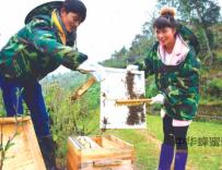 贵州90后小夫妻蜜蜂养殖酿甜蜜