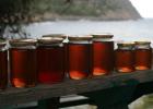 沁水刺槐蜂蜜 养蜂 蜂蜜