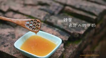 天然农家土蜂蜜的鉴别