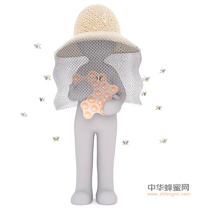 养蜂人 养蜂