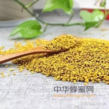 【蜂蜜与白色樱草】_花粉的作用和食用方法
