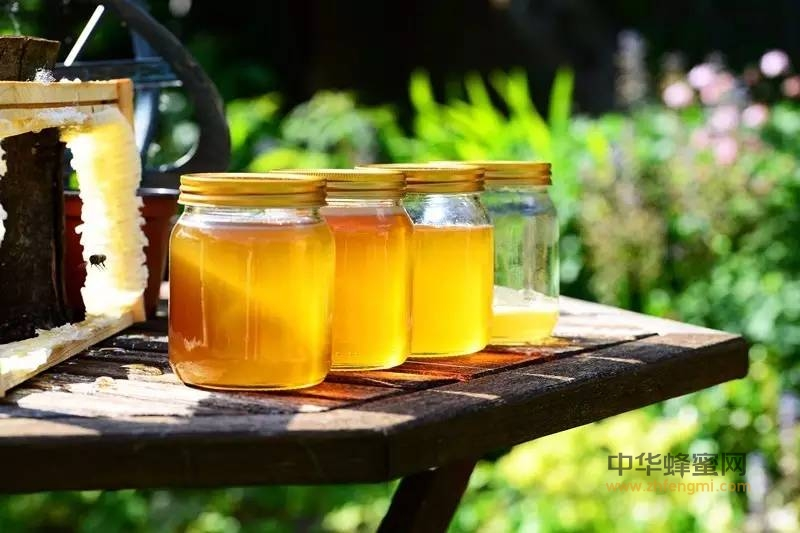 【买蜂蜜】_一勺蜂蜜,3种喝法,这样做能省去不少医药费!