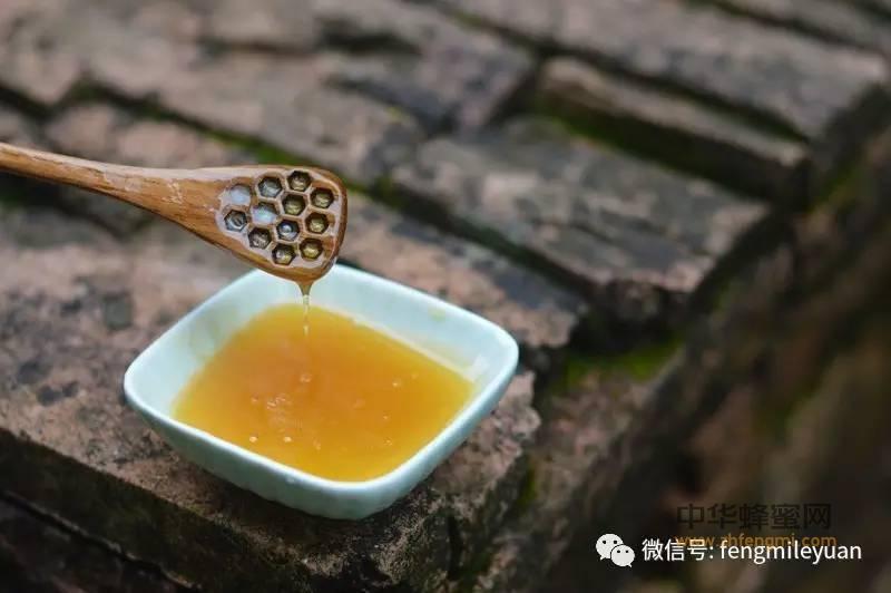 【什么蜂蜜】_皮肤杀菌消炎用什么好?蜂蜜能杀死80多种细菌!