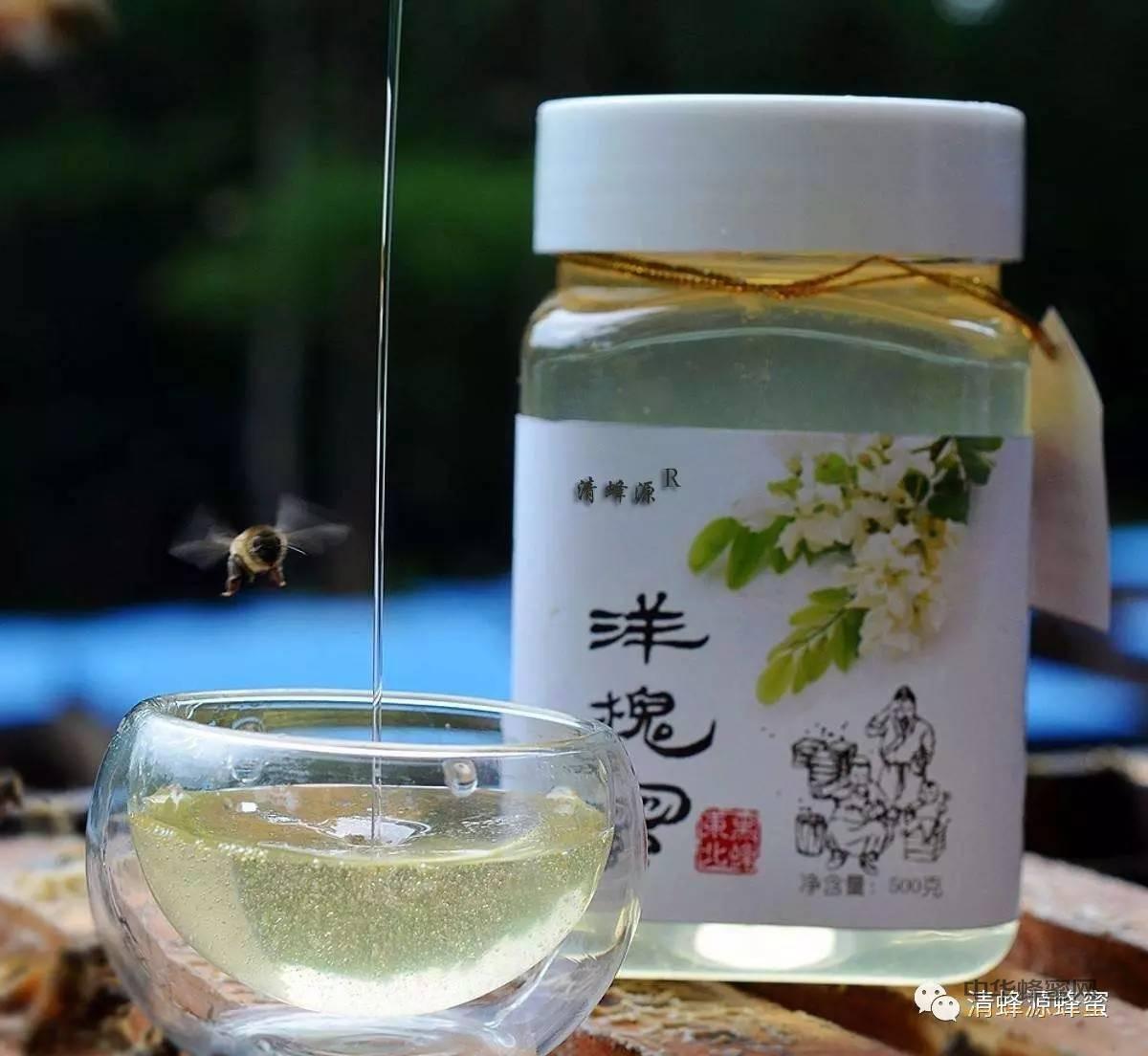 春季润燥蜂蜜是首选 介绍五种不同蜂蜜