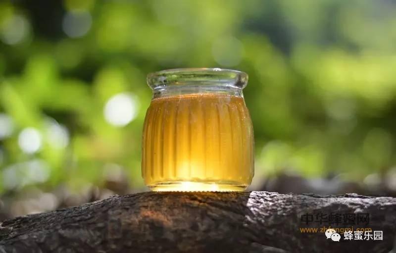 【蜂蜜白醋减肥】_蜂蜜的营养价值和美容之道,她是受益者!