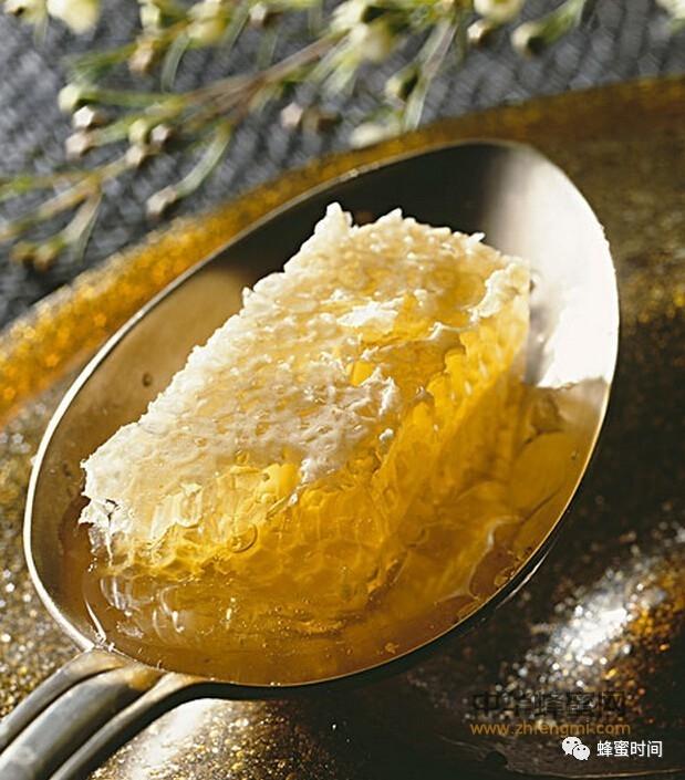 【蜂蜜与四叶草下载】_早餐吃蜂蜜健康吗?必须滴!