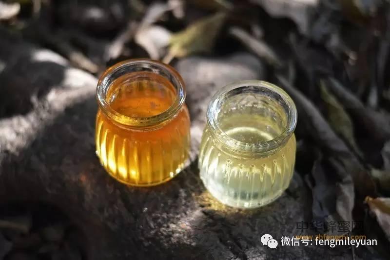 长期食用蜂蜜的好处,你知道吗?